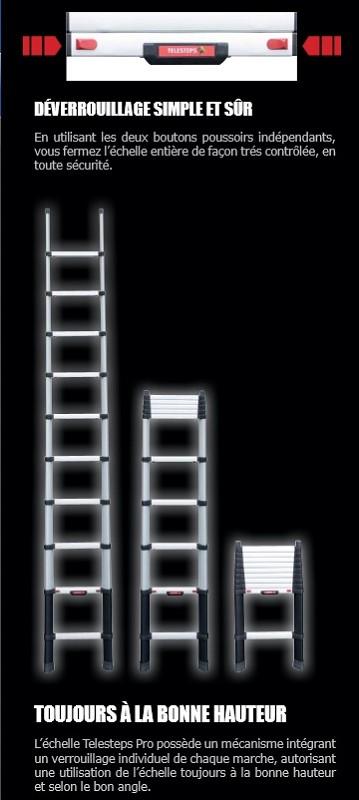 achat vente echelle telescopique pro 3 80m. Black Bedroom Furniture Sets. Home Design Ideas